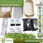 microgreens kits doubles