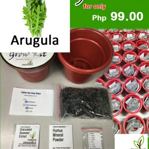 arugula grow kit