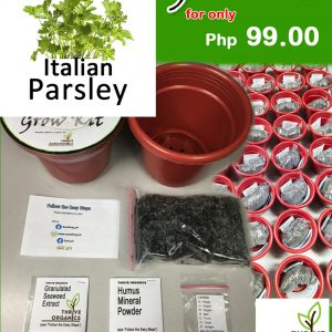 italian parsley grow kit