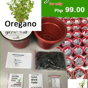 oregano grow kit