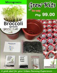 grow kits inside