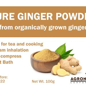 Pure Ginger Powder